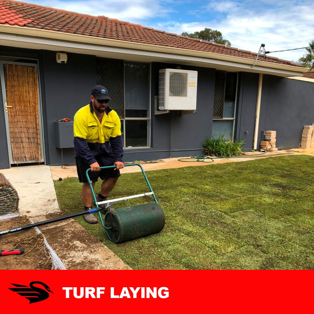Turf Laying