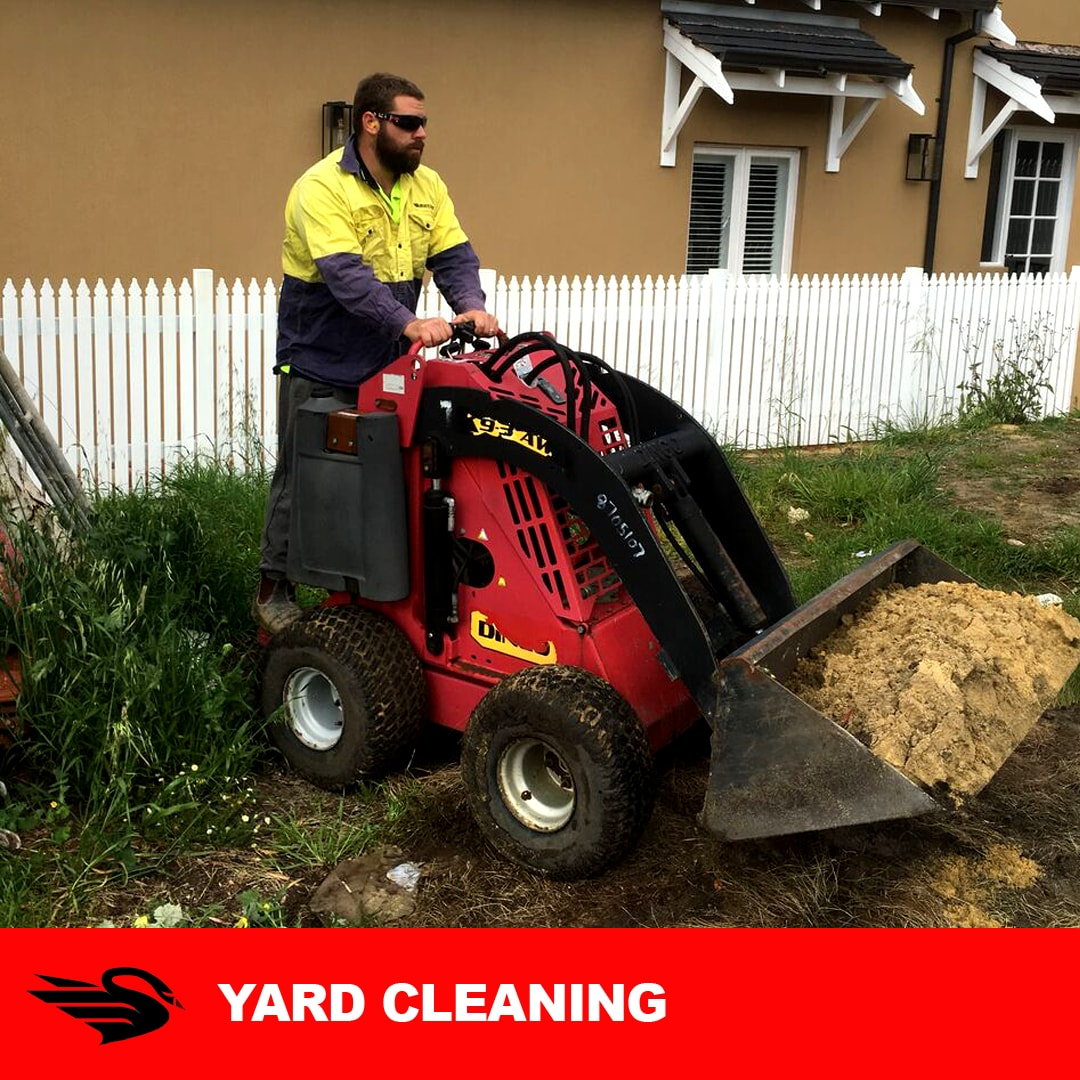 Yard Cleaning