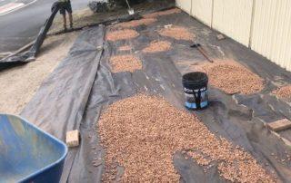yard mulching process